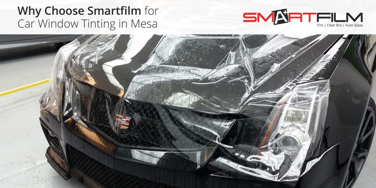 Paint Protection Film for the Winter