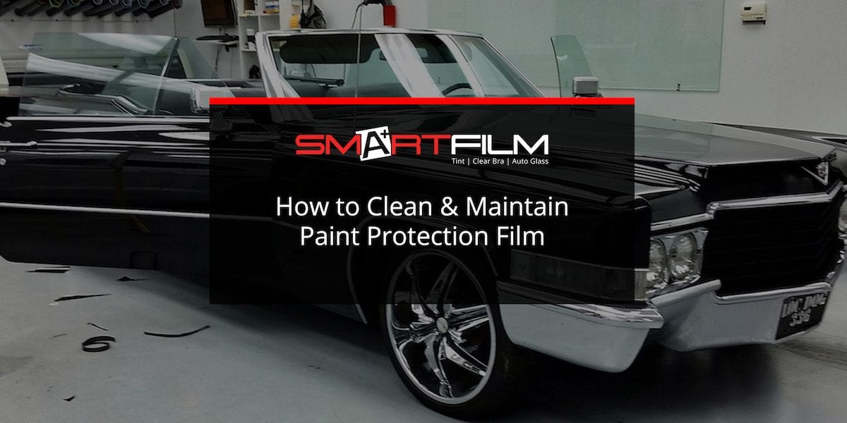 paint protection film car paint protection films paint protection film vehicle